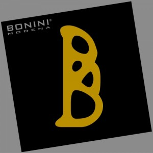1384946919_2200_1_logo_reg_bonini
